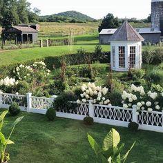 backyard design – Gardening Tips Limelight Hydrangea, Hydrangea Bush, Beautiful Gardens, Beautiful Homes, House Beautiful, Gardening For Dummies, Home Grown Vegetables, Balcony Plants, Garden Images