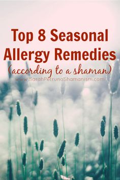 Natural healing remedies for seasonal allergies - herbs, resources, and visualizations that work!