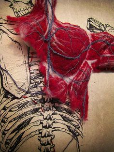 Dan Beckemeyer uses hand-made abaca paper to combine a highly detailed illustration of the human skeletal system with a stitched cardiovascular system and hand-felted muscle mass. Textiles, Arte Gcse, Frida Art, A Level Art, Oeuvre D'art, Textile Art, Textile Design, Fiber Art, Illustration