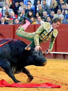 Bull Market - Spanish bullfighter Jose Luis Moreno avoids injury from his second bull during a bullfight at La Maestranza bullring in Seville, Spain.