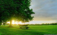 amazing sunrises   - Download free Amazing Spring Sunrise Amazing Spring Sunrise ...