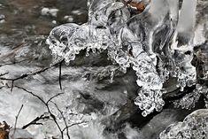 https://flic.kr/p/PgzRF5 | Forest Stream Winter Ice /  Erdei patak Tél Jég | bach  eis  erdei  forest  ice  jég  patak  stream  tél  wald winter