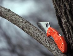 Knives and Tactical Gear Spyderco Knives, Edc Gear, Cafe Racers, Folding Knives, Knifes, Tactical Gear, Gears, Tools, Pocket