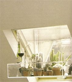 sweet skylight cacti garden.  Wine is also great.