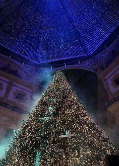L'Albero di Natale Swarovski a Milano si illumina con 10.000 Cristalli albero di natale Swarovski a Milano 2014