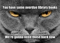 You have some overdue library books. We're gonna need those back now.