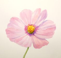 Paint Draw Paint, Learn to Draw: Water Color Basics: A Cosmos Flower  -nice how-to for watercolor wet on wet