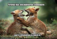 Firefox has encountered cloneware