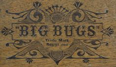 Google Image Result for http://atlantic-cable.com/Field/BigBugs/BigBugsBox._d.jpg