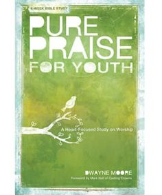 Option for Middle or High school Bible study?
