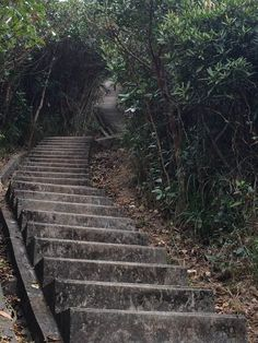 never-ending steps going up to the Twins