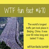WTF-fun-facts