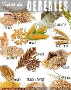 NO CONFUNDAMOS: LEGUMBRES, CEREALES, SALVADO, SEMILLAS Y FRUTOS SECOS. | Manipulando lo que comemos