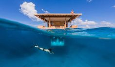 Underwater floating hotel room at Manta #Resort in #Zanzibar
