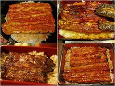 yummy Japanese unagi (eel) with rice