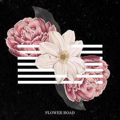 """Flower Road"" revisiting #bigbang #flowerroad #kpop #gdragon #t.o.p #daesung #seungri #taeyang #collage #graphic #cd #album #song #music #layout #flower #black #bias #korea #design #graphidesign #behance"