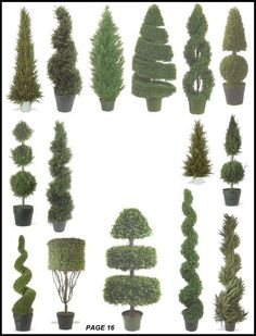 Silk Tree Warehouse Cedar Pine Cypress Boxwood Leucodendron Fir Cone Ball Juniper Evergreen Myrtle Potted Artificial Indoor Outdoor Spiral Topiary page 16 Outdoor Topiary, Topiary Plants, Topiary Garden, Topiary Trees, Garden Art, Indoor Outdoor, Potted Plants, Boxwood Tree, Garden Hedges
