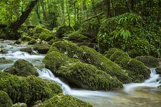 Chastelbachtal, Grellingen Schweiz Waterfall, River, Outdoor, Long Exposure, Switzerland, Outdoors, Waterfalls, Outdoor Games, The Great Outdoors