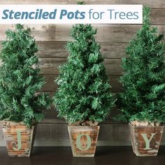 Stencilled pots for trees