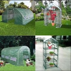 Greenhouse Large Outdoor Walk IN Mini Garden Green HOT House Full Closed | eBay