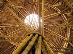 Bamboo is a almost perfect construction material....Become creative