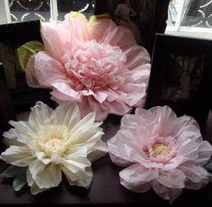 Lot de 3 fleurs en papier géantes L Rose / vanilleparfait