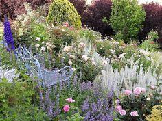 In Gumeracha bei Adelaide im Süden Australiens ist es Meg Smyth gelungen ihren Traum von einem Englischen Garten zu verwirklichen. Wer möchte nicht auf der blauen Metall-Bank inmitten von pastellfarbenen Blumen sitzen? Die klassiche Kombination von Strauch-Rose mit Katzenminze (Nepeta) und Rittersporn (Dephinum) funktioniert immer. In diesem Hang-Garten begleiten sie noch Mohn (Papaver) Beifuss (Artemisia) Fetthenne (Sedum) und Lupine (Lupinus). Wunderschön...