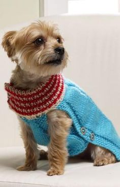 Holiday Dog Sweater Free Knitting Pattern from Red Heart Yarns