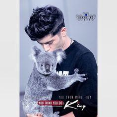 Malik One Direction, Facebook Dp, Boys Dpz, Stylish Boys, Girls Dp, Thinking Of You, Hero, Zayn Malik, Movie Posters