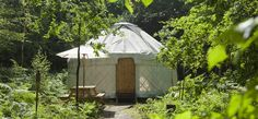 Adhurst Estate yurts - five yurts in some posho's farm in the South Downs