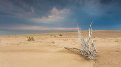 Sobieszewo Island by Tomasz Wozniak on 500px
