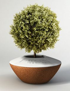 POETREE a funeral urn that evolves over time as a companion through the stages of mourning. The ashes are placed in the urn and are covered with soil. Designed by: Margaux Ruyant of DSK ISD International School of Design (India)—IDEA 2011 Gold, Student Cremation Boxes, Cremation Urns, Stages Of Mourning, Green Funeral, Funeral Urns, Funeral Caskets, Funeral Memorial, After Life, Trees To Plant