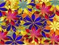 Stained Glass Art - Stained Glass Photo (21688559) - Fanpop