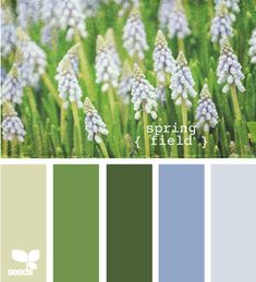 This spring field color palette would be awesome in my dream kitchen.