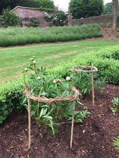 Für die Pfingstrosen - Garden Care, Garden Design and Gardening Supplies Potager Garden, Garden Trellis, Vegetable Garden, Garden Landscaping, Farm Gardens, Outdoor Gardens, Garden Structures, Dream Garden, Garden Planning