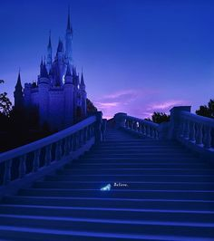 Disney World Wonders