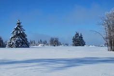 Winter, Snow, White, Winter Dream
