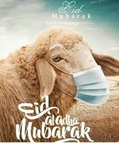 Eid Al Adha Wishes, Ramadan Wishes, Happy Eid Al Adha, Eid Quotes, Quran Quotes Love, Islamic Love Quotes, Eid Images, Eid Mubarak Images, 3id Adha