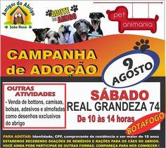 Bonde da Bardot: RJ: ADOÇÃO DE ANIMAIS NESTE SÁBADO (09/08) EM BOTA...