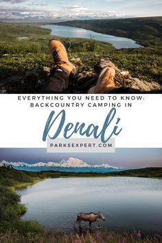 This guide to backpacking in Denali National Park, written by a local, details how to obtain your Denali backpacking permit. Plus, download a free packing list!   Backpacking in Denali National Park   Denali Backpacking   Denali Backcountry   #denalinationalpark #denali #alaska #nationalparks