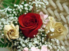 the three roses