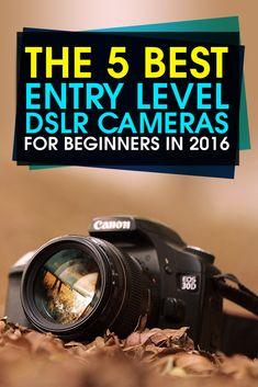 The 5 Best Entry Level DSLR #Cameras for Beginners in 2016 https://gurucamera.com/best-entry-level-dslr-cameras/ #photography #DslrCameras