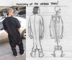 Anatomy of an urban thug!