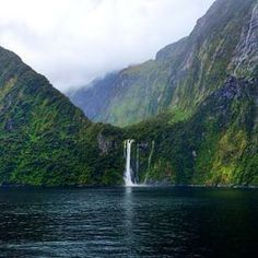 Discover all there is to find in the deeply diverse greenery of  #NewZealand.    Photo courtesy of belgonzaa on Instagram