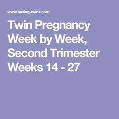 Twin Pregnancy Week by Week, Second Trimester Weeks 14 - 27