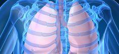Cientistas desenvolvem vacina efetiva contra a tuberculose