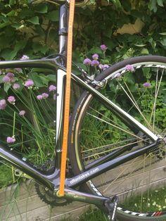 Trek Madone 5.2 Rennrad in Baden-Württemberg - Weinheim Trek Bikes, Bicycle, Ebay, Road Racer Bike, Bathing, Bike, Bicycle Kick, Bicycles