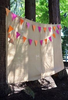 DIY photo booth - burlap and pennant banner background - flags in wedding colors