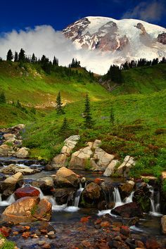 #Edith Creek and Mt Rainier Mt Rainier National Park Washington #USA  #Holiday #Travel  #Vacation #SMtravel #TNI #RTW