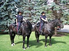 List of law enforcement agencies in Canada - Wikipedia